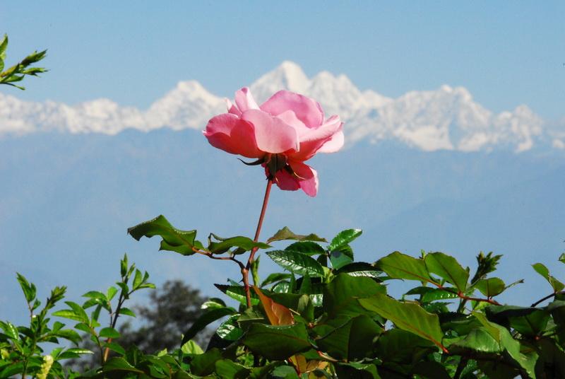 נפאל, לבד, להימאלאיה – אשה עולה אל ההרים