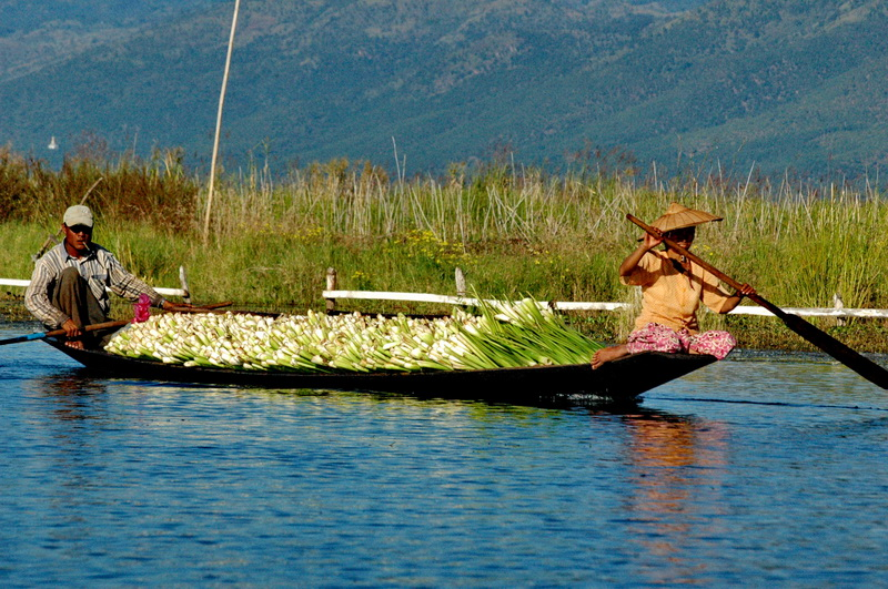 INLE_08_resize
