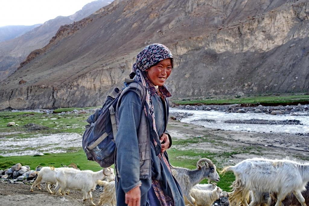 רועה בדרך בהרים, לאדאק